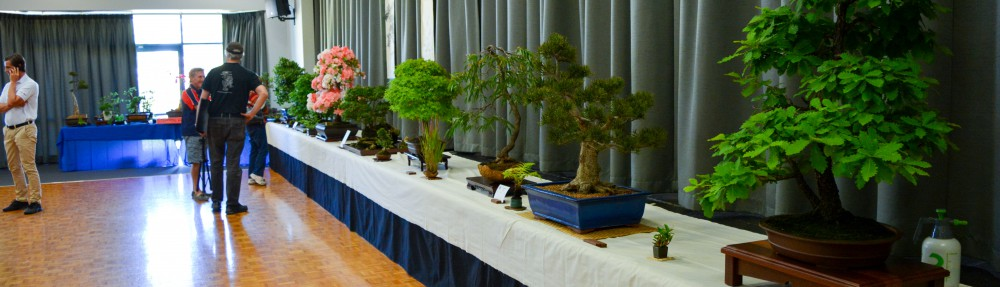 Bonsai Society of WA
