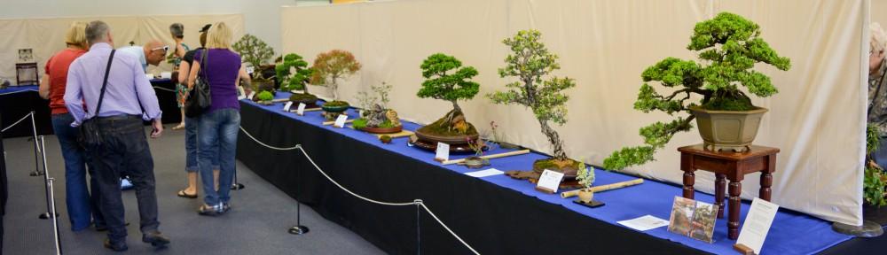 Bonsai Society of WA