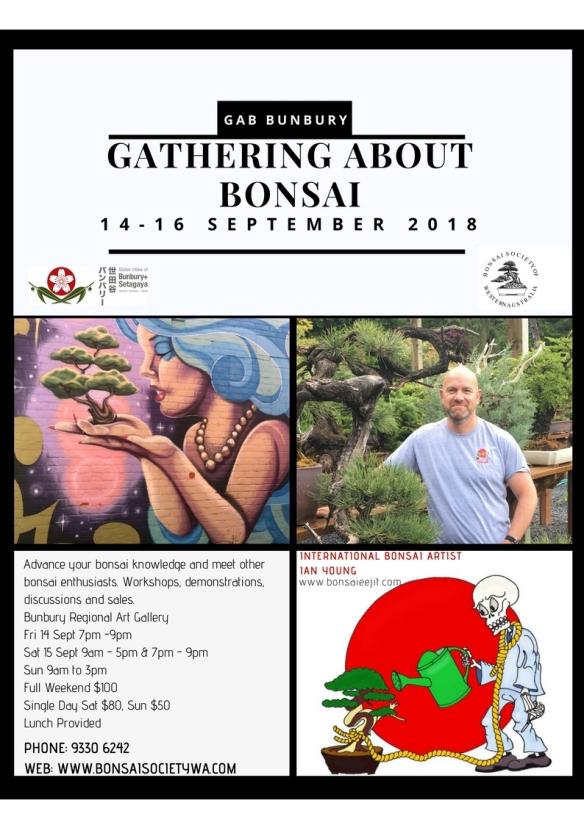 Download Gathering About Bonsai