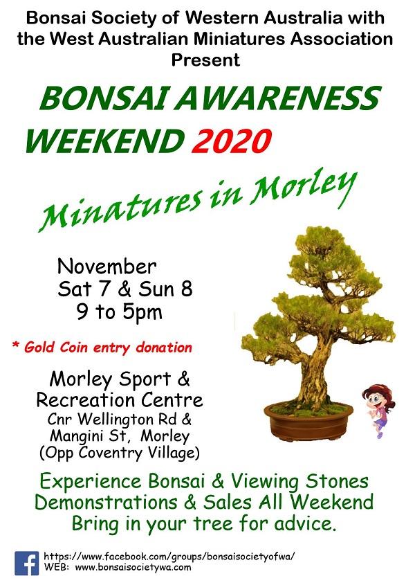 Exhibitions Bonsai Society Of Wa
